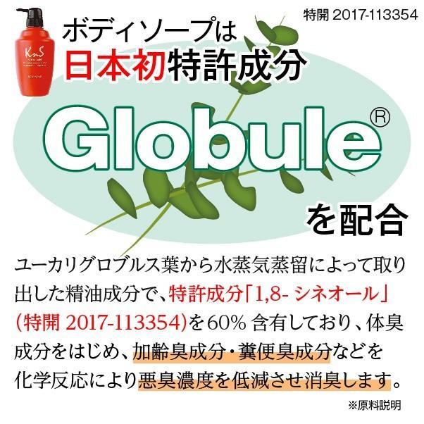 柿のさち KnS 薬用柿渋ボディソープ 詰替パウチ|soapmax|04