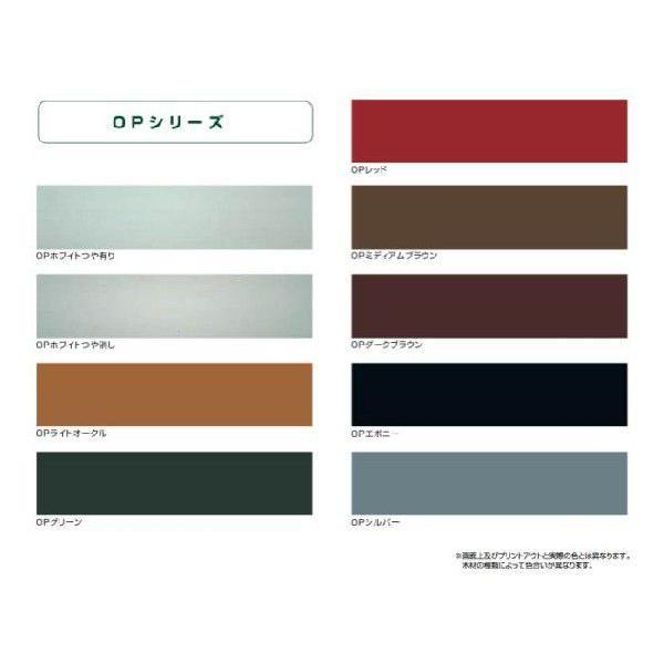 プラネットジャパン 塗りつぶしタイプ着色仕上げ OPグリーン 2.5L