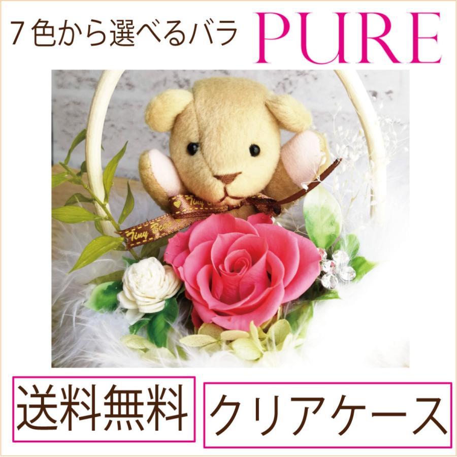 プリザーブドフラワー 発売モデル 早割クーポン プレゼント 誕生日 PURE くまさんと 選べるバラの色 薔薇 クリアケース 送料無料 バラ 祝電 結婚式