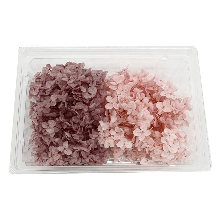 《プリザーブドフラワー》そらプリ 大地農園 花材 アナベル アジサイ 約2輪 記念日 いよいよ人気ブランド プリザ 紫陽花 ピンク×パープル あじさい