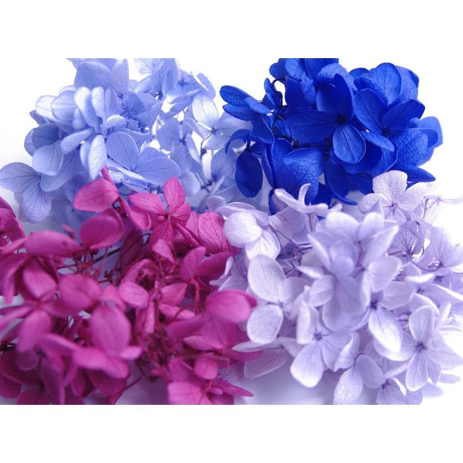 そらプリ 永遠の定番モデル プリザーブドフラワー オリジナル 花材 アジサイ 福袋 パープル系ミックス 小分け4色