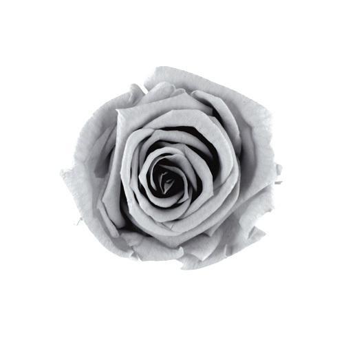 プリザーブドフラワー 花材 ベイビーローズ シルキー 通常便なら送料無料 グレー 小分け バラ 交換無料 灰色 材料 資材 1輪 モノトーン