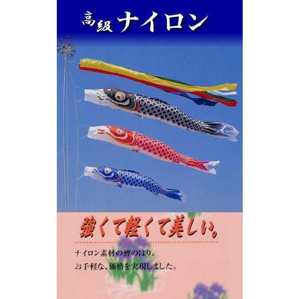 【10m6点【ナイロン鯉】 お庭用 【吹流し・黒鯉・赤鯉・青鯉】 (ポールは別売り)