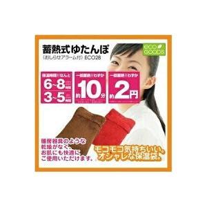 [大阪ブラシ/OSAKA BRUSH]  蓄熱式ゆたんぽ ブラウン 茶色 大阪ブラシ蓄熱式ゆたんぽ ECO28 sophianail