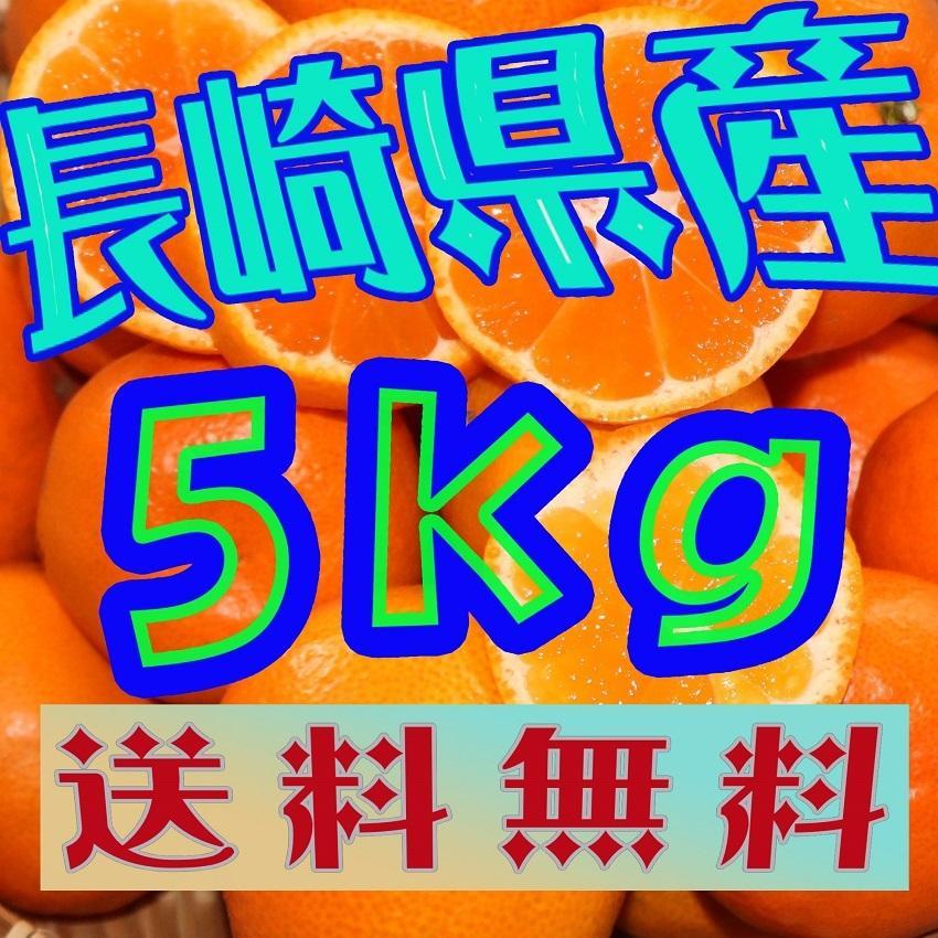 送料無料 長崎県産みかん 約5kg サイズ(S・M・L)混合|sotome