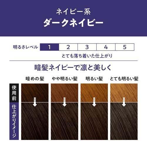 リーゼ 泡カラー ダークネイビー ( 3セット )/ リーゼ soukai 02