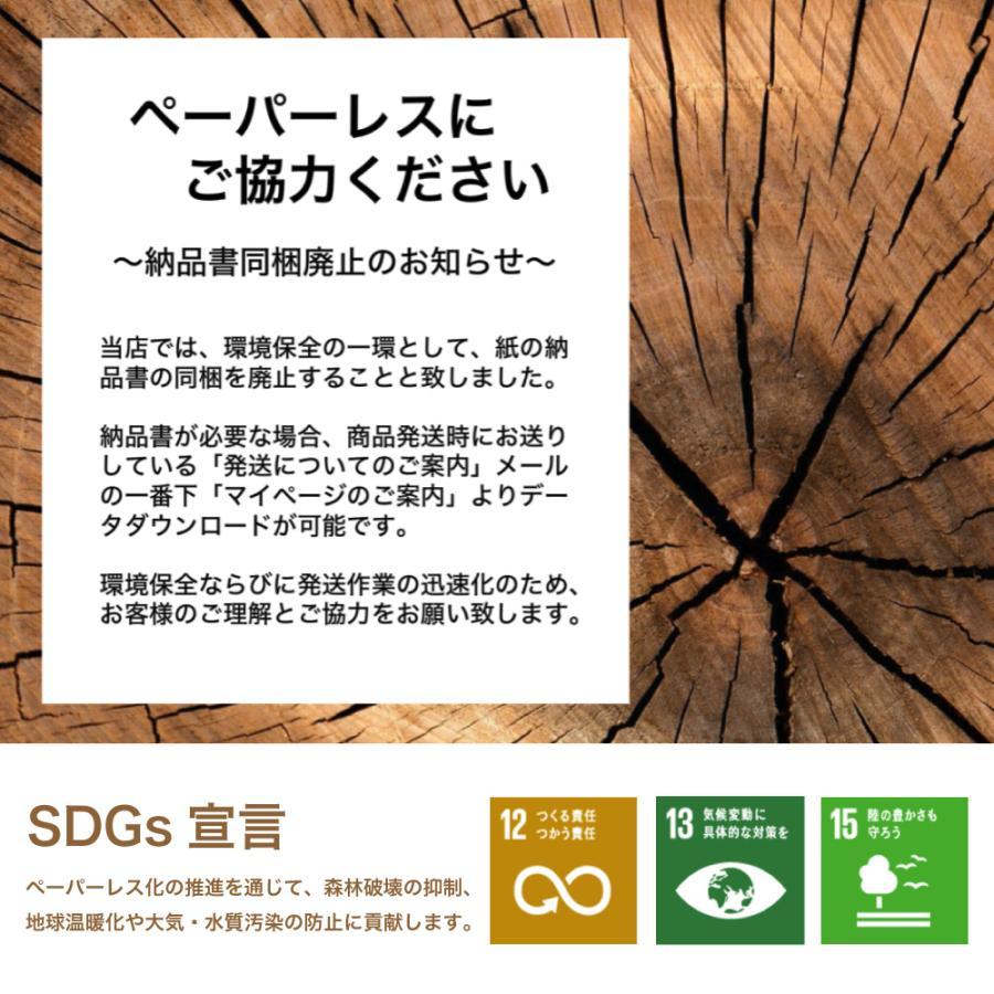 ワイヤレスイヤホン Truefree+ サウンドピーツ SoundPEATS iphone bluetooth 携帯 ラジオ 防水 ブルートゥース イヤホン ワイヤレス マイク 音声 テレワーク|soundpeats|10