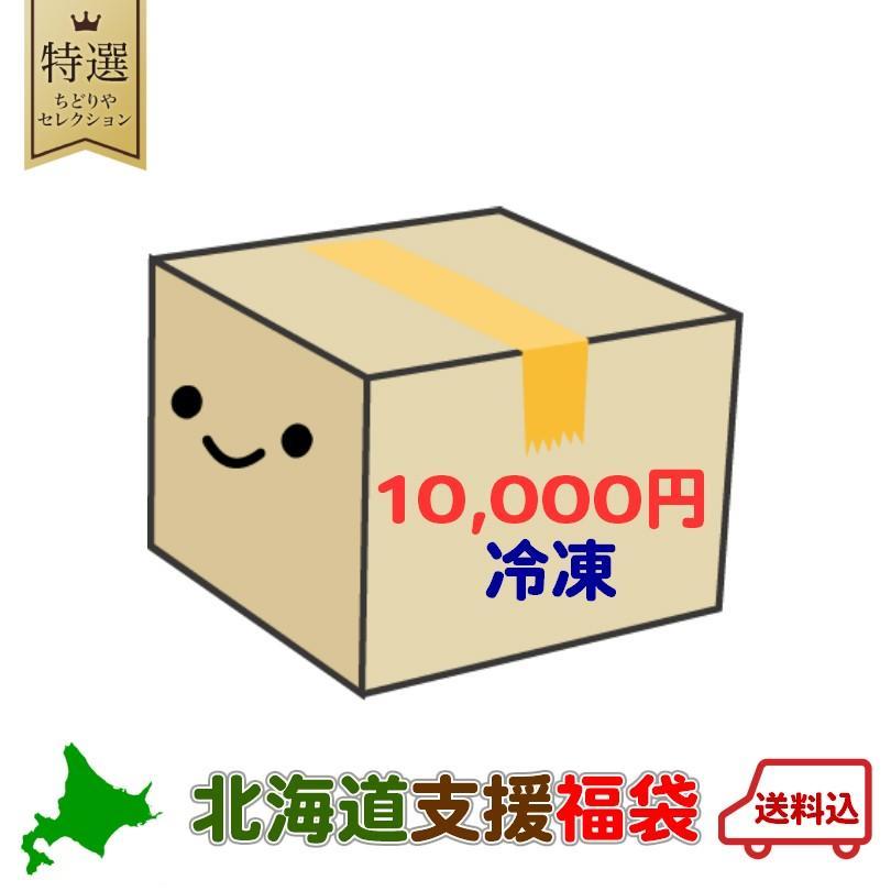 10000円ポッキリ 【冷凍】 北海道 支援福袋 送料無料  北海道 復興 福袋 銘菓 食品 復興 クッキー チョコ ポテトチップス ラーメン カレー 珍味 2020 souvenir-chidoriya