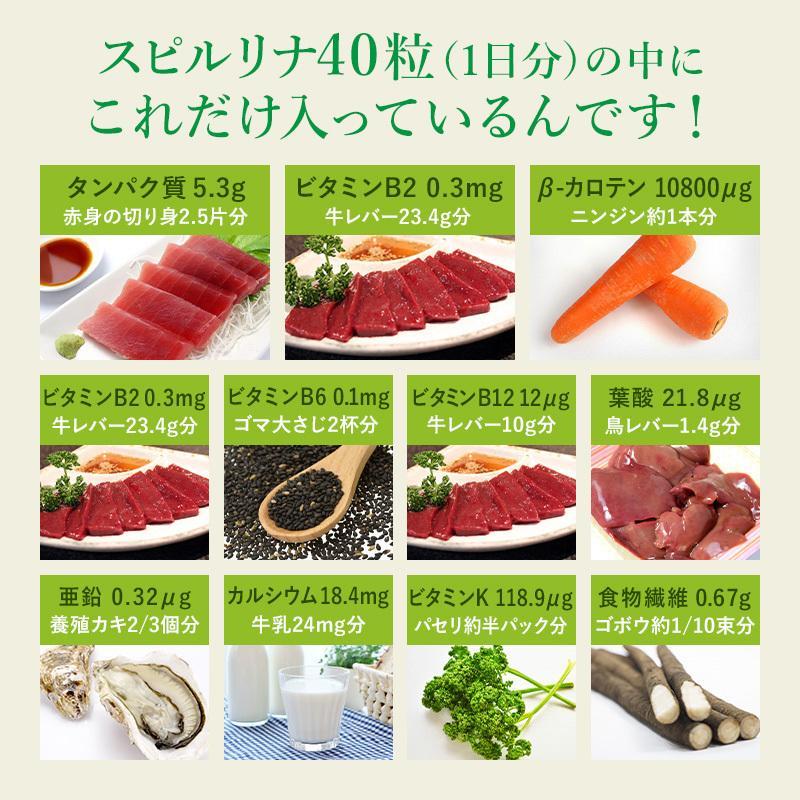 スピルリナ100% 2400粒 約2ヶ月分 野菜不足 偏食 スーパーフード アルカリ性食品 タンパク質の多い食品 sp100 10