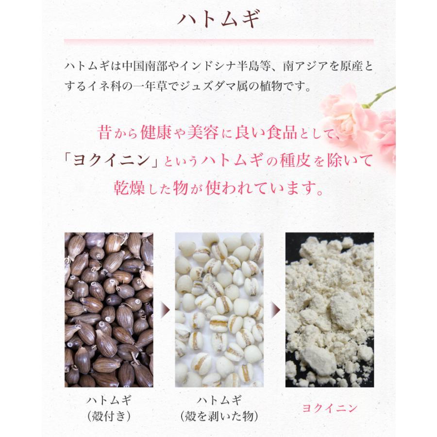 スピルリナ・ハトムギ1800粒 美容サプリ ポイント消化 健康食品 Spirulina|sp100|07