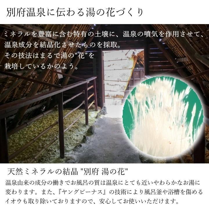 湯の花 入浴剤 別府温泉 ヤングビーナス にごり湯 5袋セット 送料無料 M-1N|spalabo|04