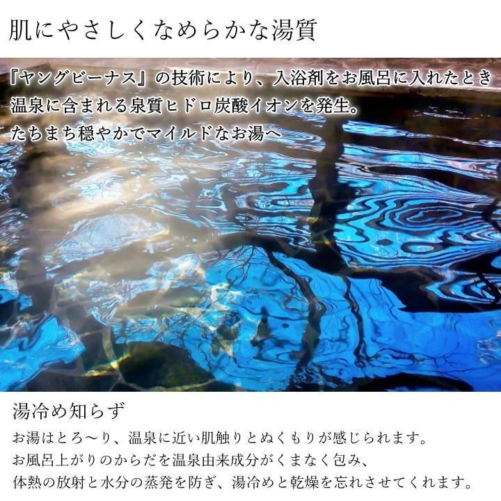 湯の花 入浴剤 別府温泉 ヤングビーナス にごり湯 5袋セット 送料無料 M-1N|spalabo|06