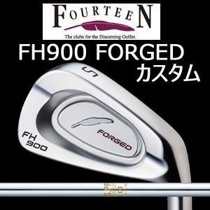【カスタム特注仕様品】 FOURTEEN フォーティーンFH900 FORGED #5〜PW 6本組 NSPRO 850GH (日本シャフト社製)