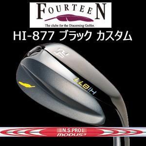 【カスタム特注仕様品】 フォーティーン HI-877【ブラックバージョン】N.S.PRO MODUS3 TOUR 120(日本シャフト社製) 【2017年6月中旬発売】
