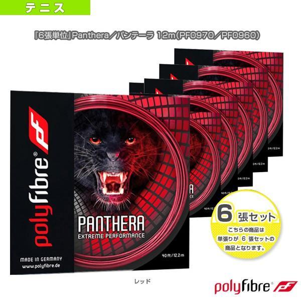 ポリファイバー テニスストリング(単張) 『6張単位』Panthera/パンテーラ 12m(PF0970/PF0960)(ポリエステル)ガット