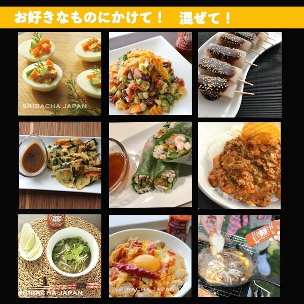 スリラチャの赤備え 517g 3本セット|sriracha-japan-shop|03