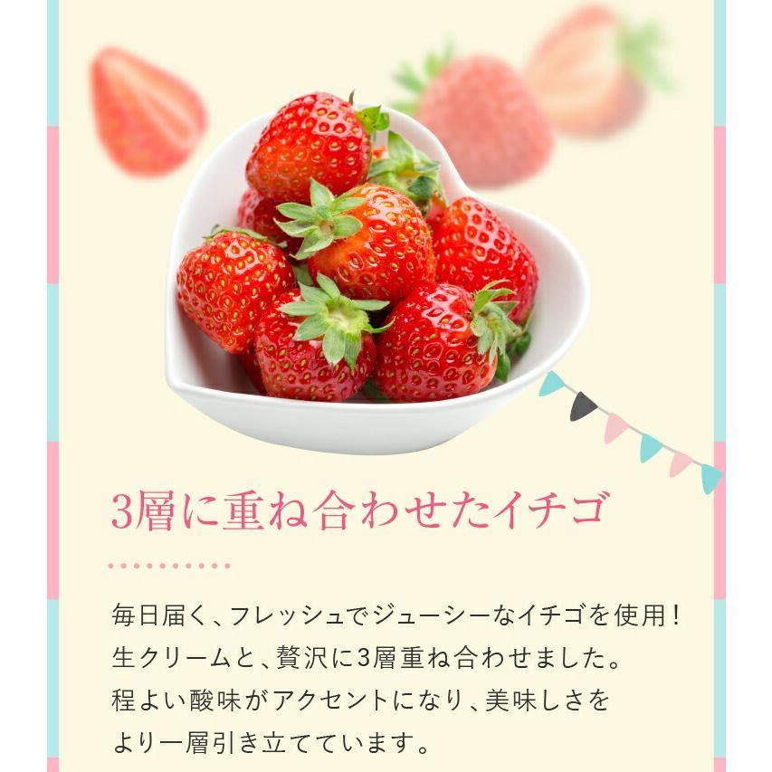 プリンセスケーキ バースデーケーキ 誕生日ケーキ スイーツ 7号(凍)ギフト 生クリーム 誕生日プレゼント 誕生日 ケーキ|srr-shop|09