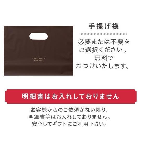 生チョコレート Sai 10粒入(凍) チョコ ギフト 生チョコ チョコレート スイーツ|srr-shop|06