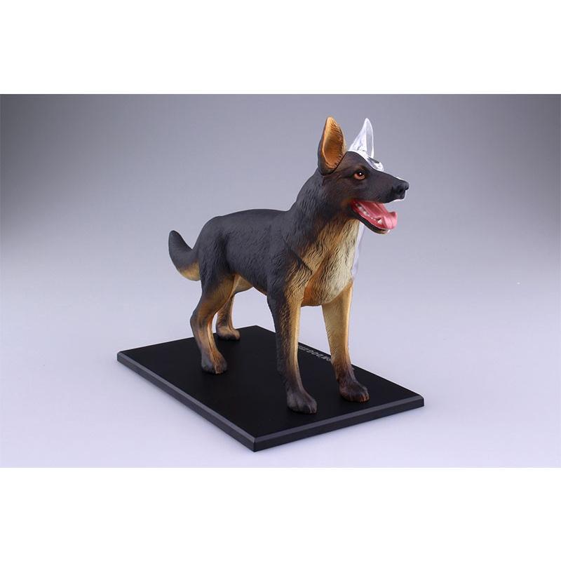4D VISION 動物解剖モデル 犬解剖モデル star-gate 02