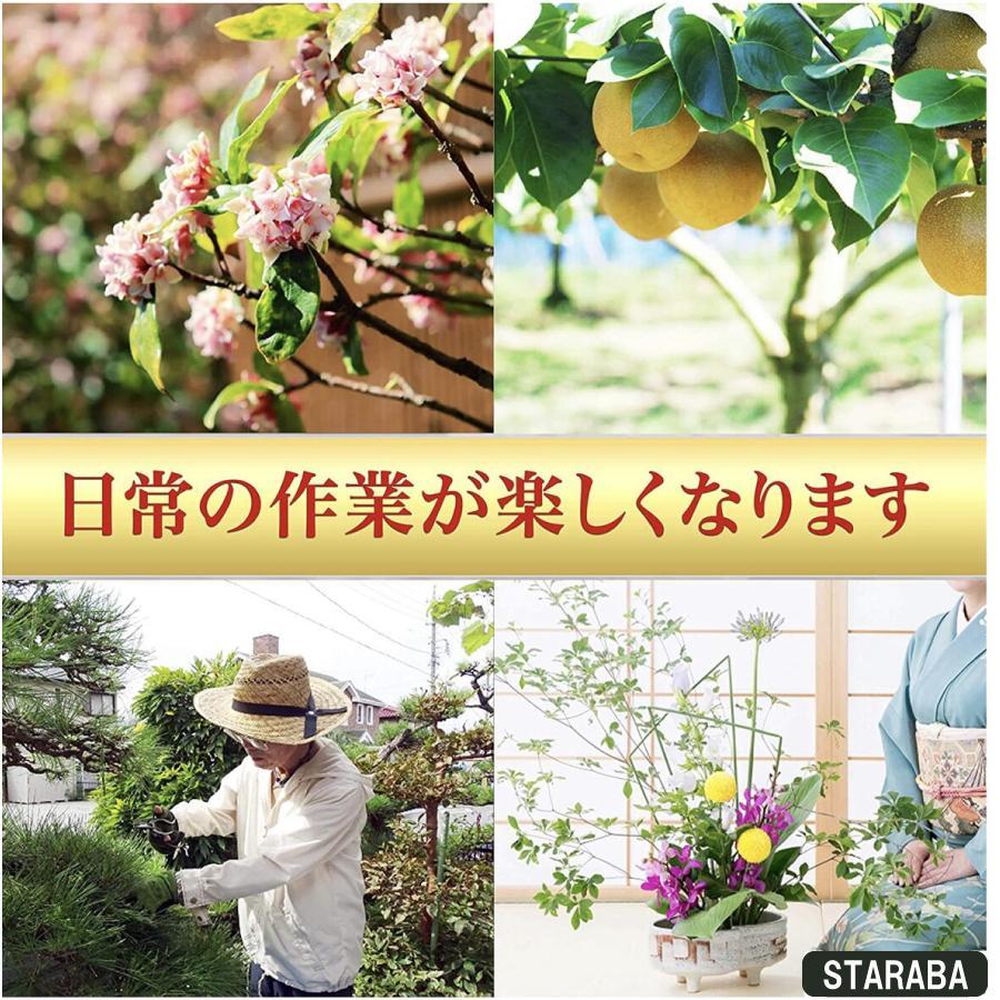 収穫バサミ 摘果 盆栽 芽切り はさみ ハサミ 庭 ガーデン 園芸 枝切り 枝切りばさみ 疲れにくい 作業 庭木 クリックポスト 送料無料 staraba 05