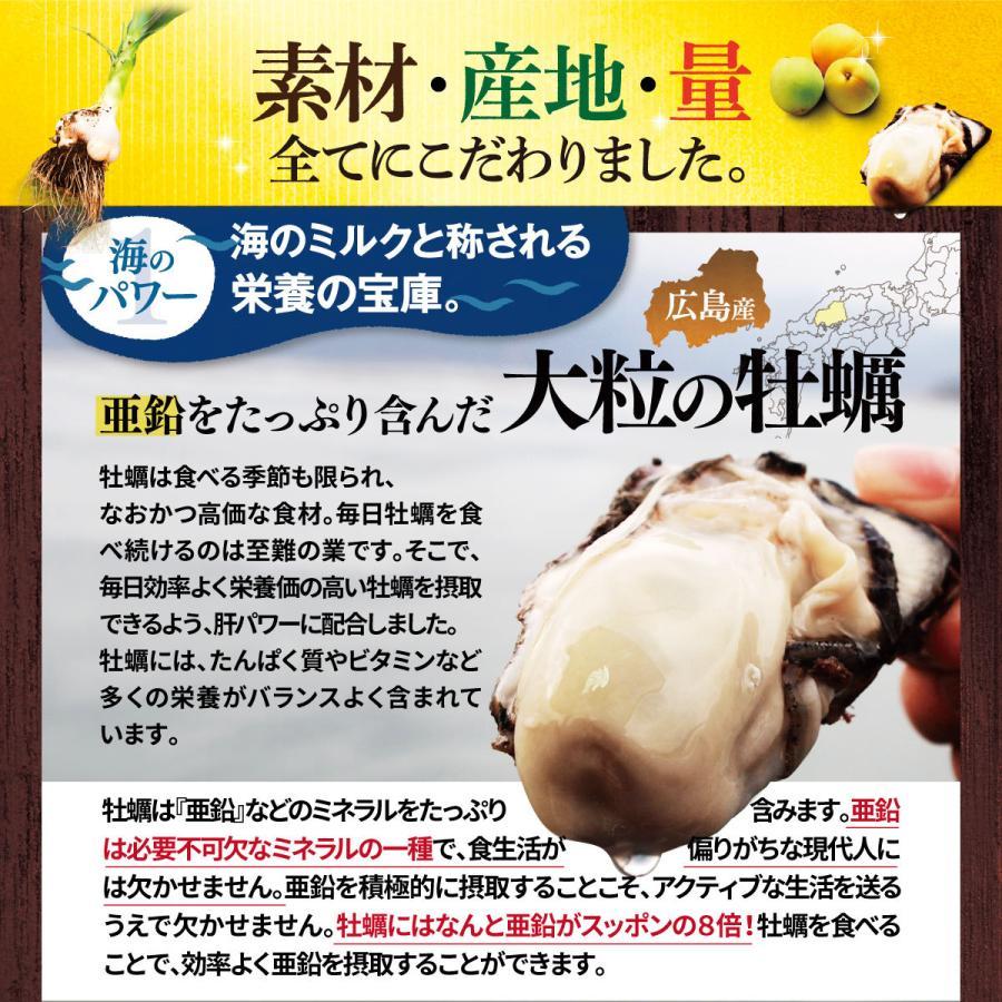 肝パワーEプラス1袋 牡蠣 亜鉛 にんにく 健康 サプリ サプリメント ステラ漢方公式保証 stella-store 12