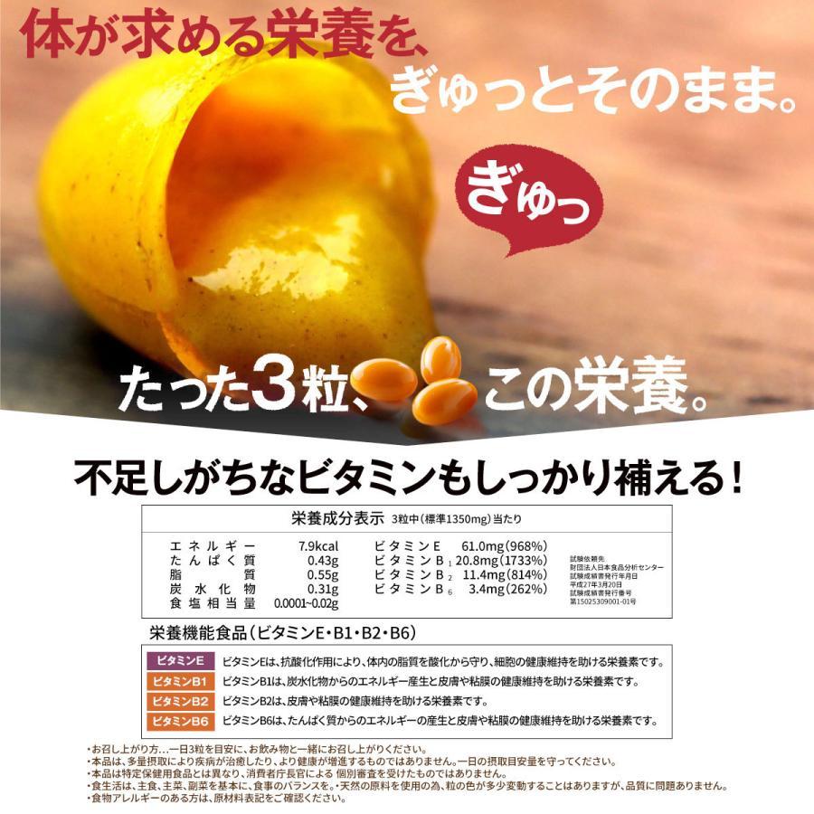 肝パワーEプラス1袋 牡蠣 亜鉛 にんにく 健康 サプリ サプリメント ステラ漢方公式保証 stella-store 15