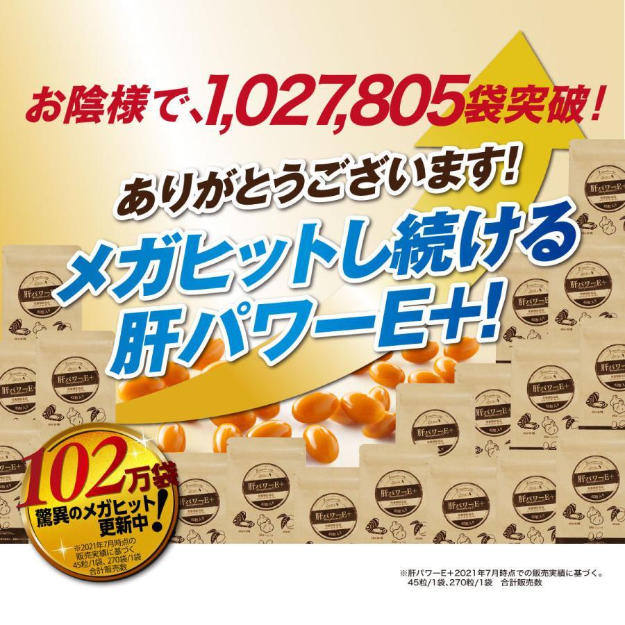 肝パワーEプラス1袋 牡蠣 亜鉛 にんにく 健康 サプリ サプリメント ステラ漢方公式保証 stella-store 03