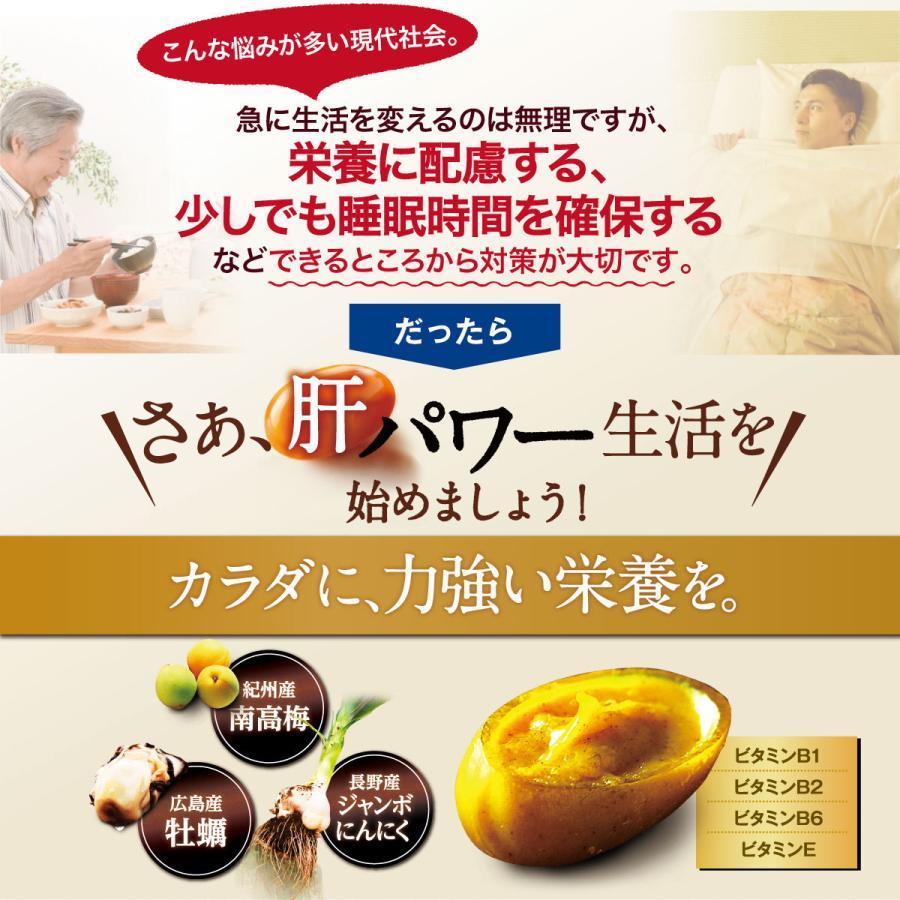 肝パワーEプラス1袋 牡蠣 亜鉛 にんにく 健康 サプリ サプリメント ステラ漢方公式保証 stella-store 09