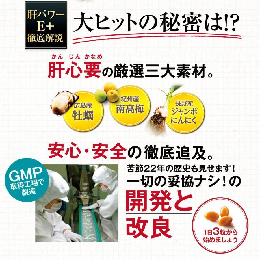 肝パワーEプラス1袋 牡蠣 亜鉛 にんにく 健康 サプリ サプリメント ステラ漢方公式保証 stella-store 10