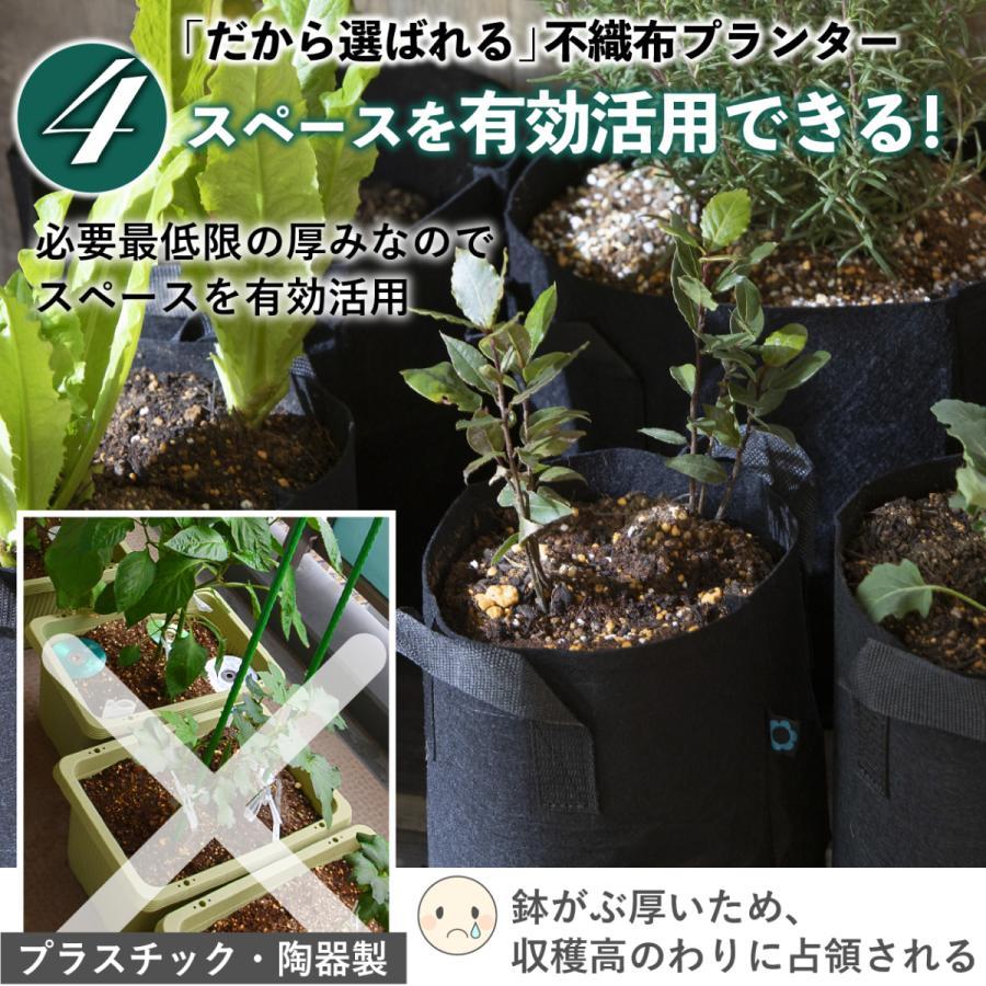 3ガロン5個 9号 25x22 植木鉢 不織布ポット 軽い 軽量 深鉢 フェルト 布鉢 黒 家庭菜園 おしゃれ 根域制限 stepone 09