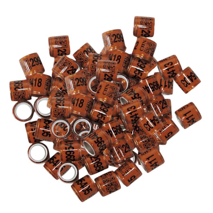 100pcsはカナリアコーヒー用の鳩の指輪脚の指輪鳩バンドを識別します|stk-shop|02