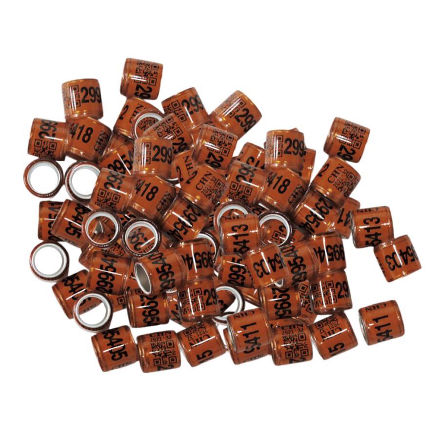 100pcsはカナリアコーヒー用の鳩の指輪脚の指輪鳩バンドを識別します|stk-shop|06