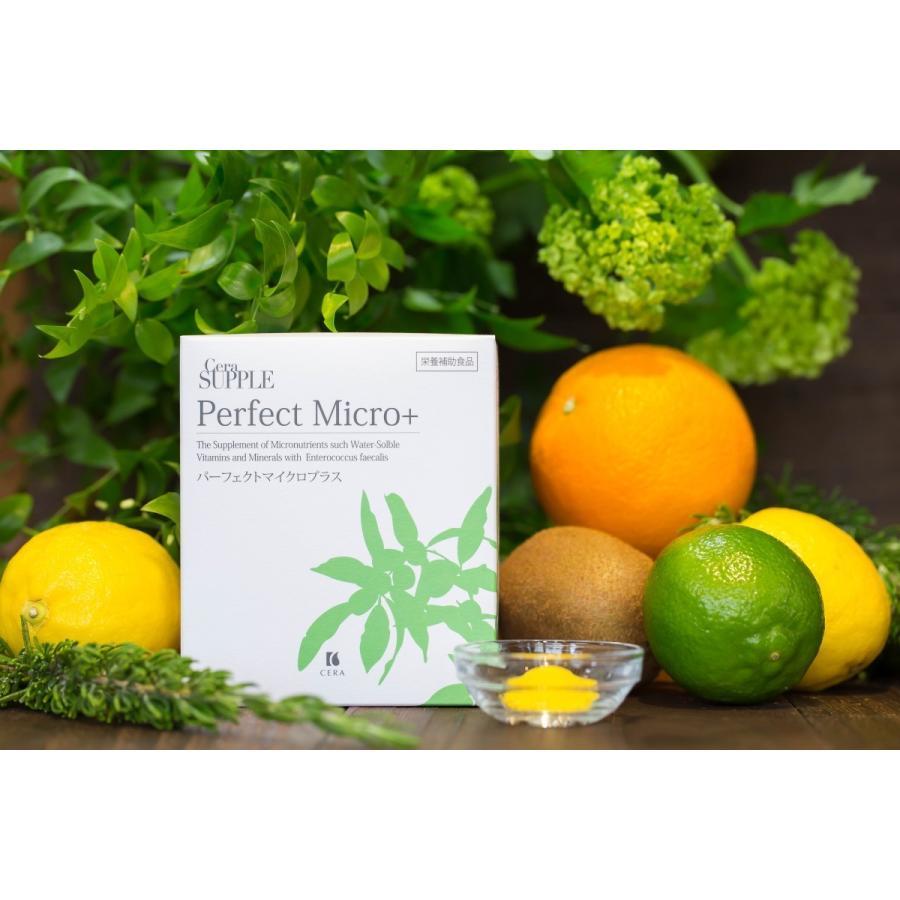 春の紫外線セット≪ビタミンEオイル「春の香り」&ビタミンサプリ≫|storecera|05