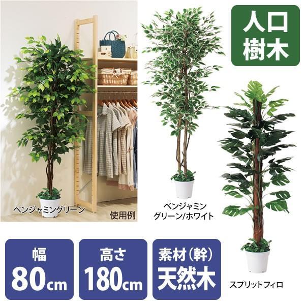 人工樹木 リアル 高さ180cm ベンジャミングリーン スプリットフィロ|storeplan