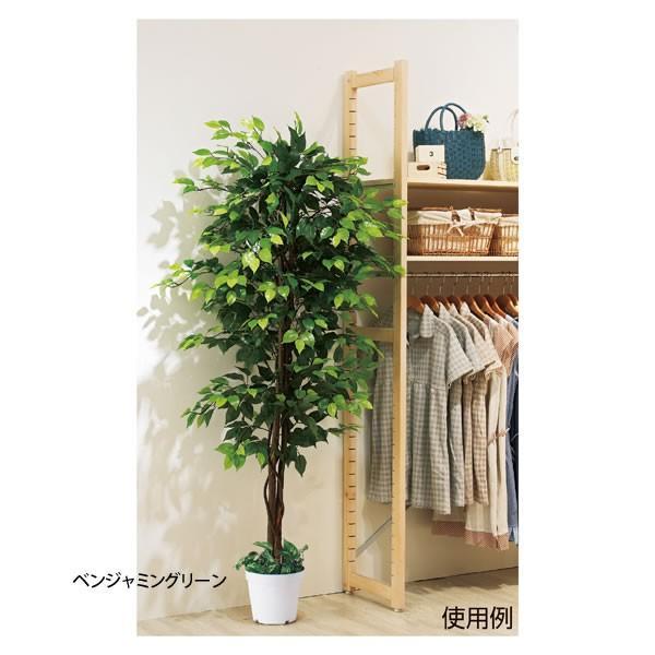 人工樹木 リアル 高さ180cm ベンジャミングリーン スプリットフィロ|storeplan|02