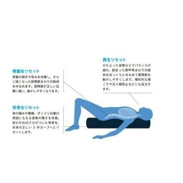 ストレッチポールEX(ネイビー)株式会社LPN stretchpole 04