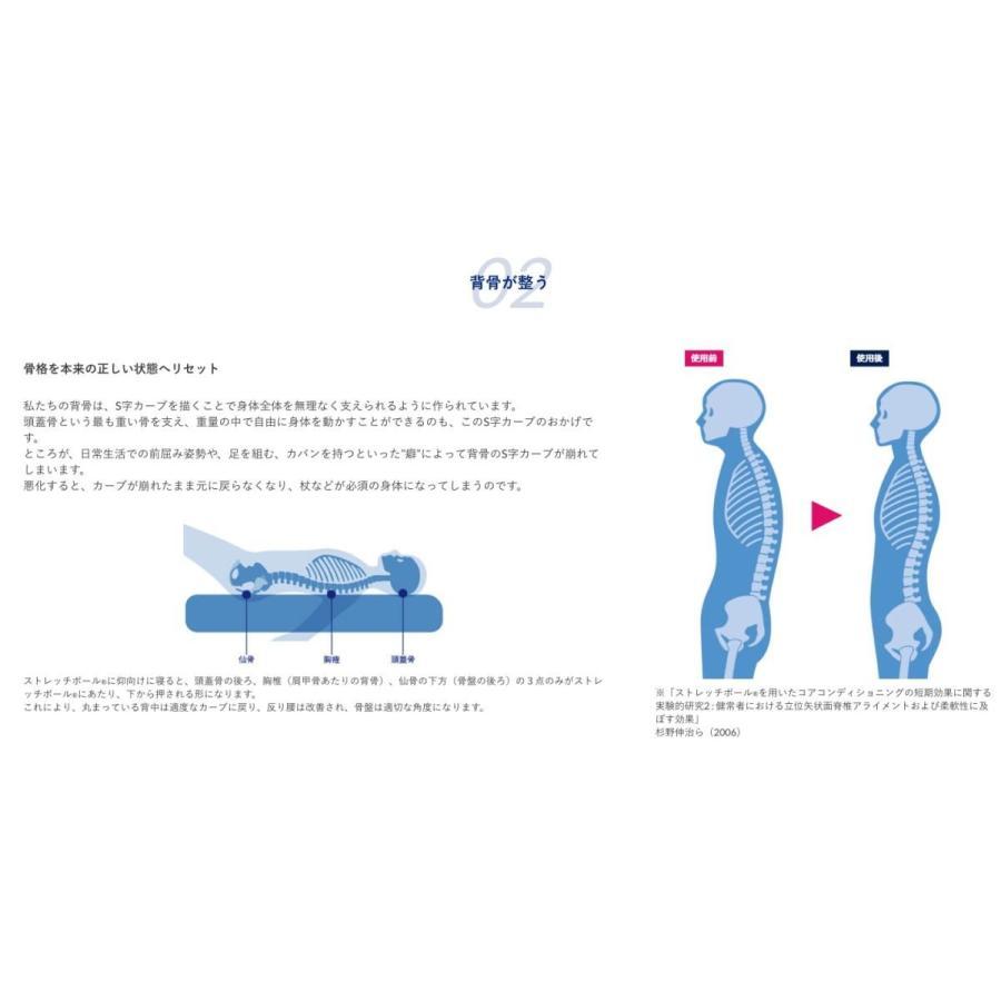 ストレッチポールEX(ネイビー)株式会社LPN stretchpole 05