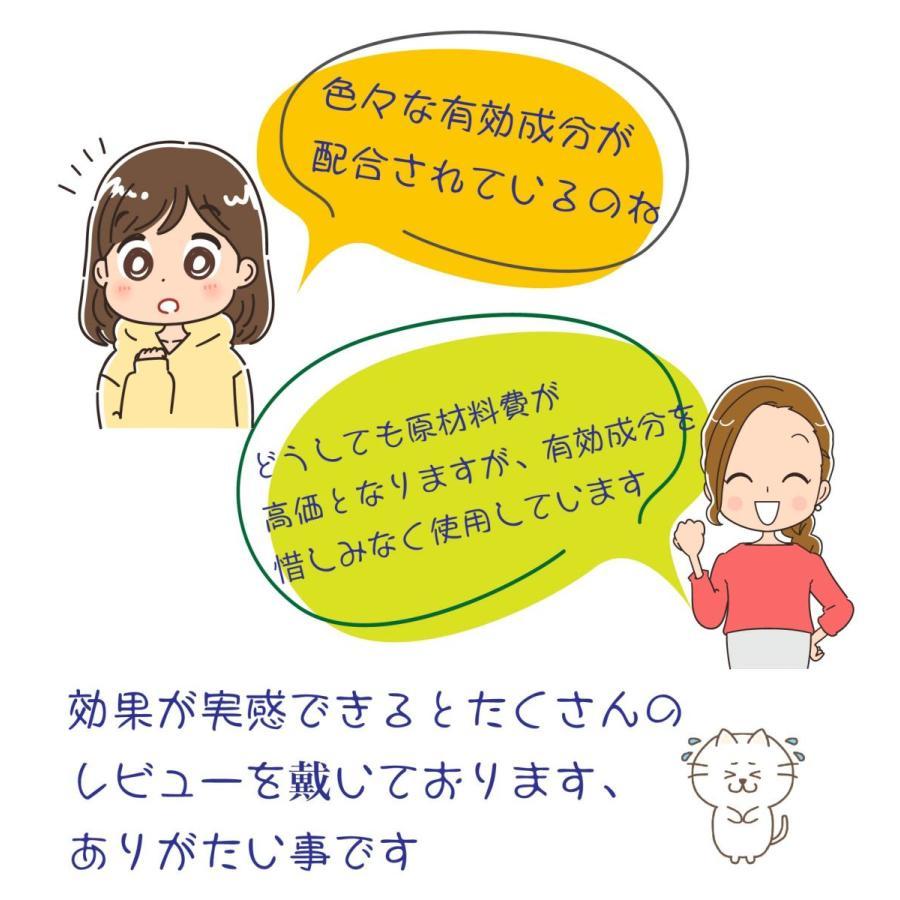 健康茶 ルイボスティー ハーブティー お茶 健康 ダイエットティー 腸活 素美人 リラックス 父の日 ダイエット キャンドルブッシュ リラックス サプリ 3g×15包|subijin|07