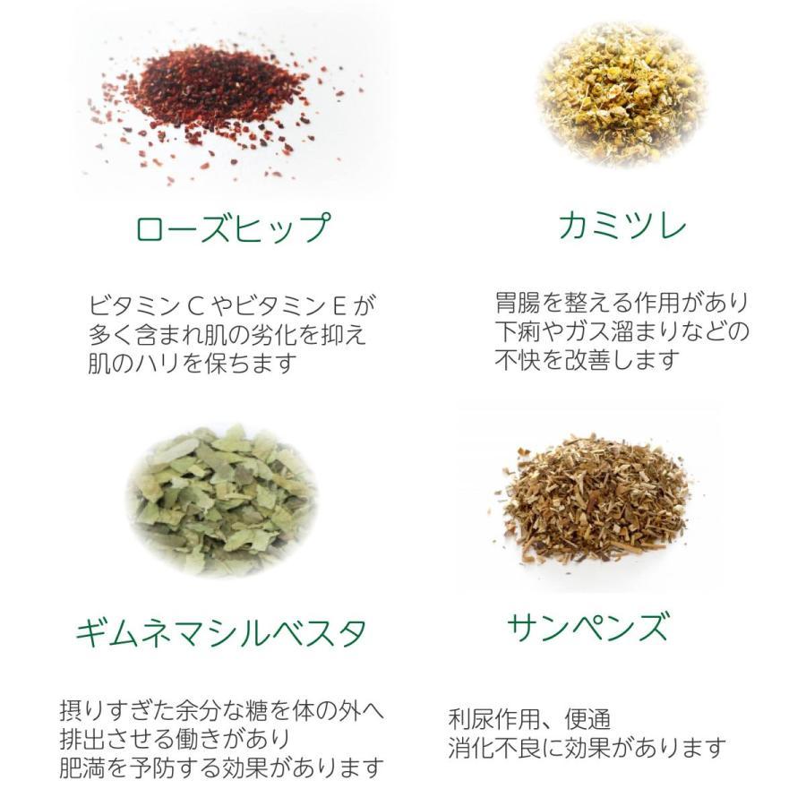 健康茶 ルイボスティー ハーブティー お茶 ダイエットティー 腸活 素美人 健康 リラックス 父の日 ダイエット キャンドルブッシュ 4袋セット 3g×60包 サプリ subijin 13