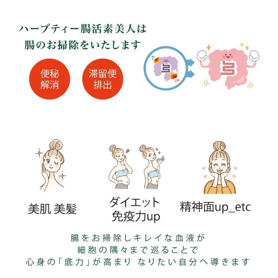 健康茶 ルイボスティー ハーブティー お茶 ダイエットティー 腸活 素美人 健康 リラックス 父の日 ダイエット キャンドルブッシュ 4袋セット 3g×60包 サプリ subijin 05