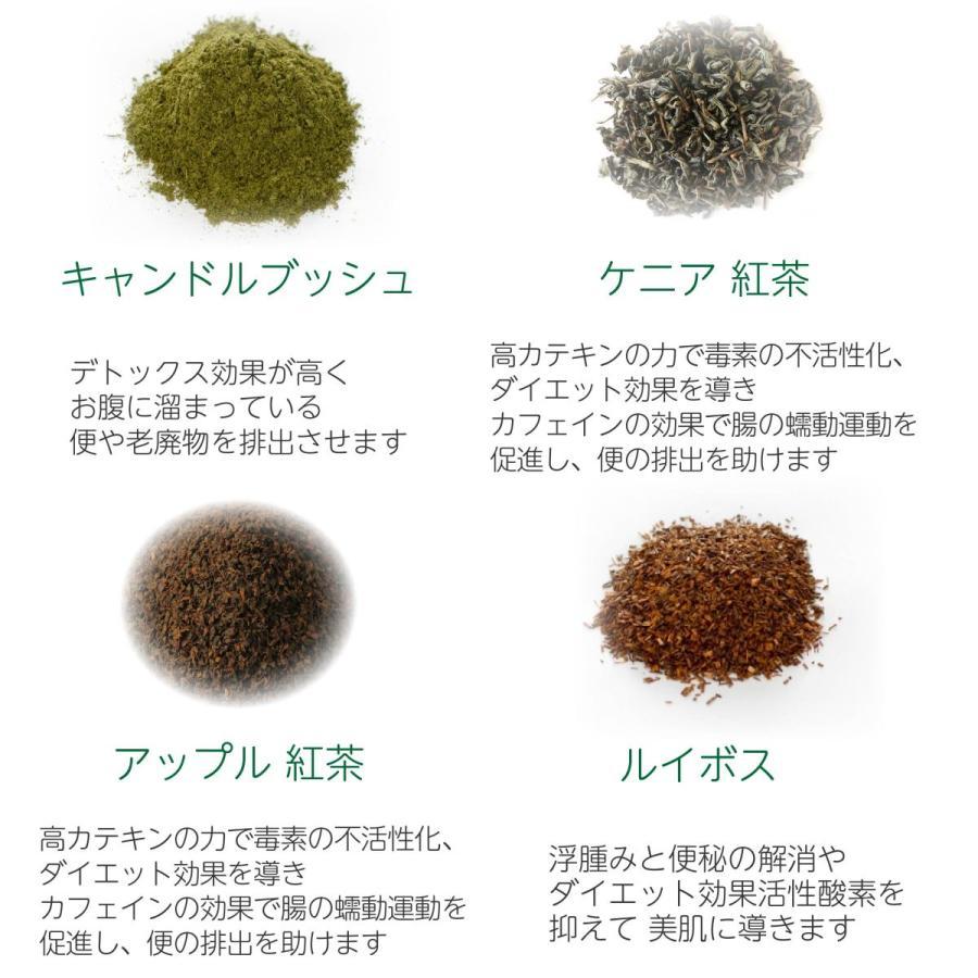 健康茶 ルイボスティー ハーブティー お茶 ダイエットティー 腸活 素美人 健康 リラックス 父の日 ダイエット キャンドルブッシュ 6袋セット 3g×90包 サプリ|subijin|12