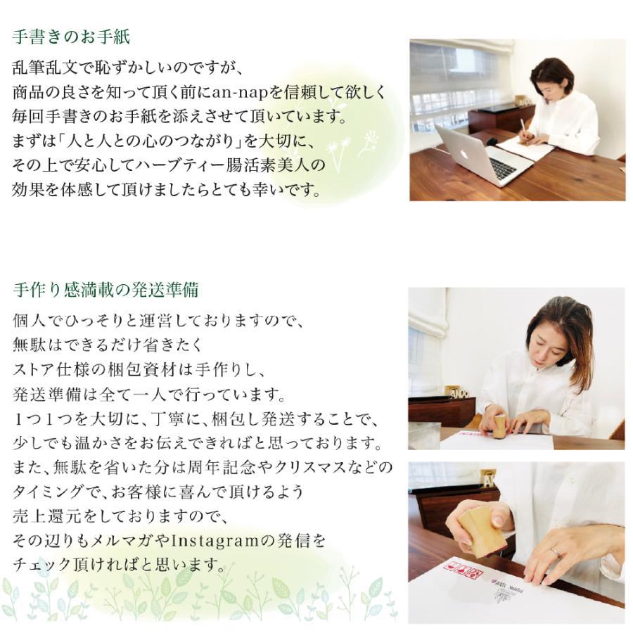 健康茶 ルイボスティー ハーブティー お茶 ダイエットティー 腸活 素美人 健康 リラックス 父の日 ダイエット キャンドルブッシュ 6袋セット 3g×90包 サプリ|subijin|04