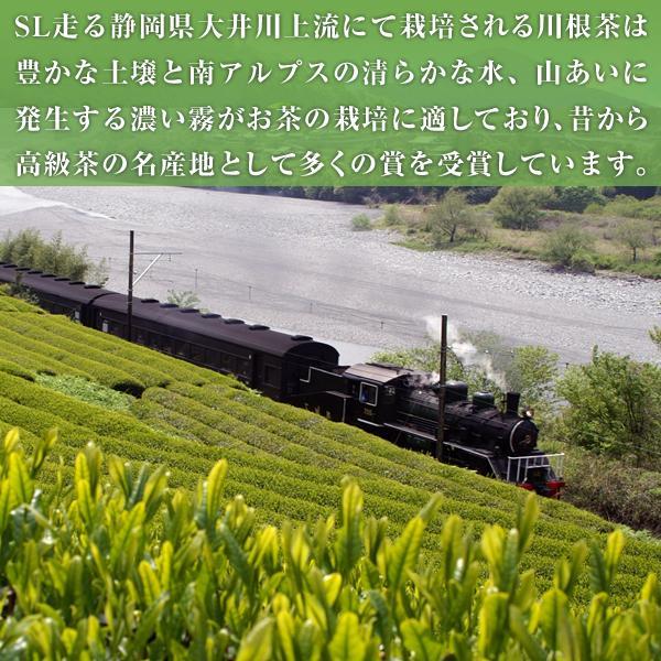 静岡 川根茶 100グラム 864円(税込)|sueki3154|03