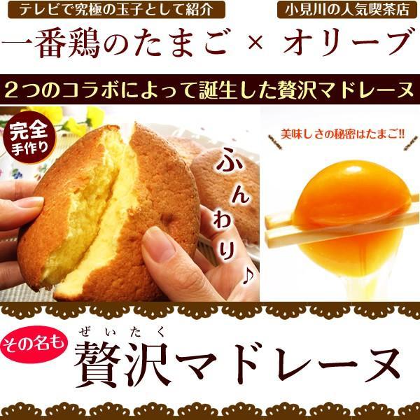 マドレーヌギフト 自然卵たっぷりの贅沢マドレーヌ 10個詰 贈答用 ギフト 送料無料|suigodori|02