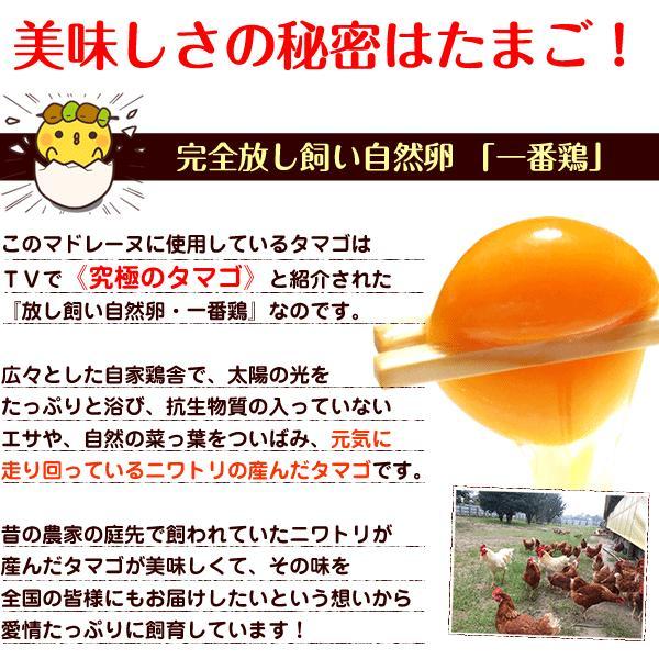 マドレーヌギフト 自然卵たっぷりの贅沢マドレーヌ 10個詰 贈答用 ギフト 送料無料|suigodori|05
