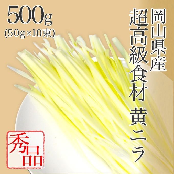 岡山県特産 超高級食材 黄ニラ 秀品 500g(50g×10束) にら 韮 suikinkarou