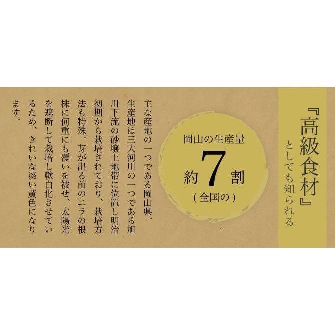 岡山県特産 超高級食材 黄ニラ 秀品 500g(50g×10束) にら 韮 suikinkarou 04