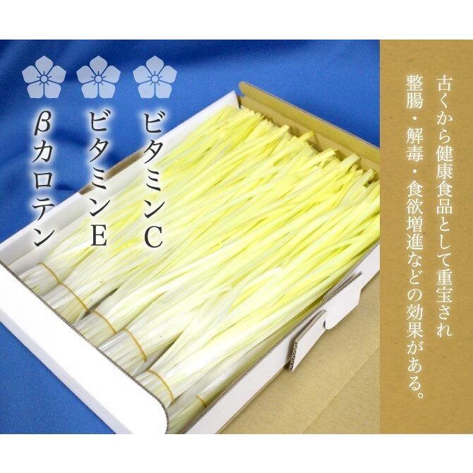 岡山県特産 超高級食材 黄ニラ 秀品 500g(50g×10束) にら 韮 suikinkarou 05