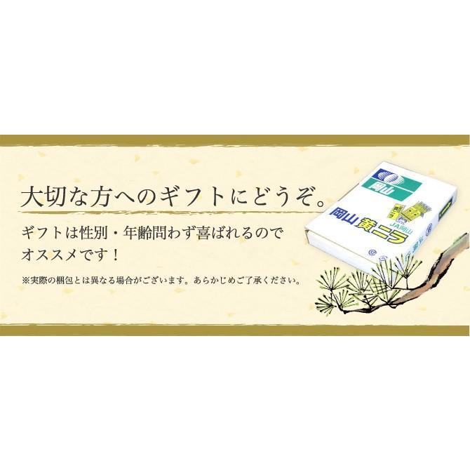 岡山県特産 超高級食材 黄ニラ 秀品 500g(50g×10束) にら 韮 suikinkarou 06