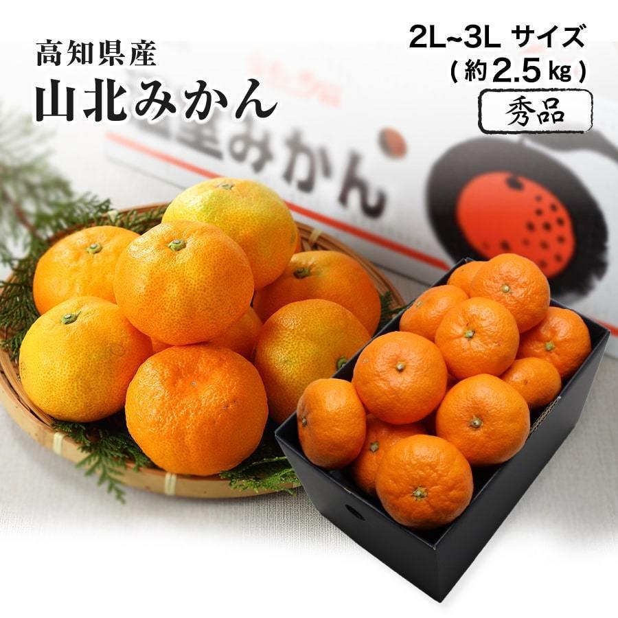 高知県産 山北温室みかん 温州みかん 購買 秀品 2L〜3Lサイズ 2.5kg 夏 特価キャンペーン フルーツ みかん